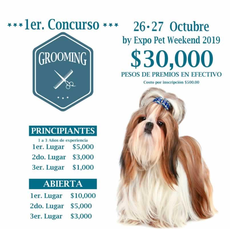 Expopet Weekend 2019 Concurso Pet Grooming
