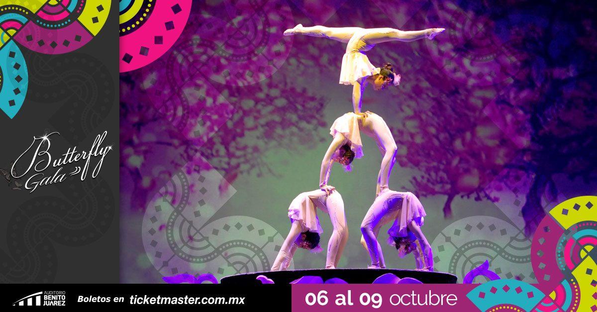 Butterfly Gala Fiestas de Octubre 2019